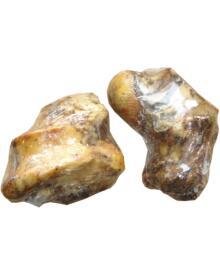 Whesco - Okse knogle m/kød