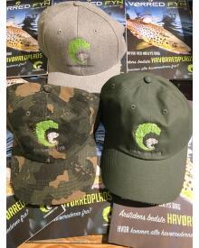 Havørred fyn - Havørred fyn cap grøn